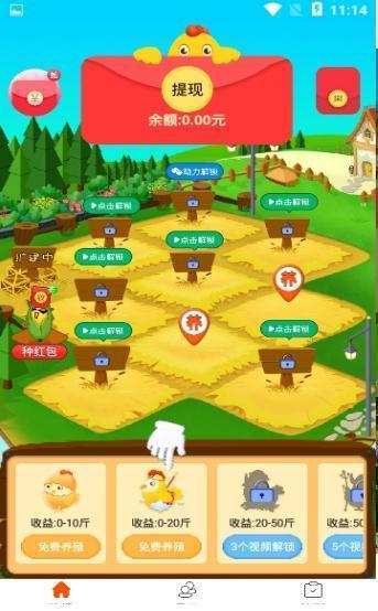 養雞云農場 圖2