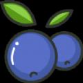 藍莓素顏照查看器